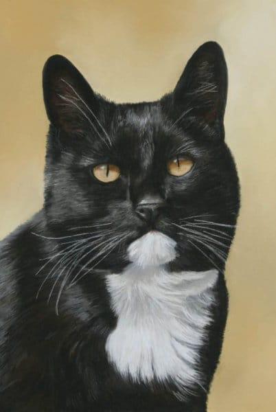 Портрет кота Дика