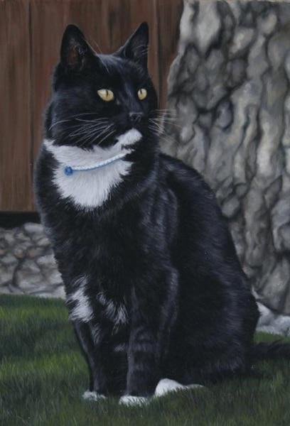 Портрет кота Барсика